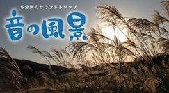 癒しのコンテンツ NHK-音の風景